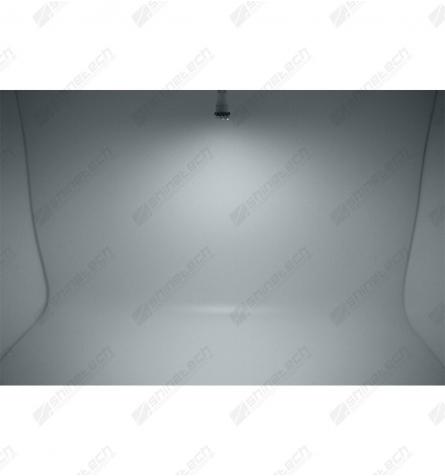 Lygtefolie - Lys sort